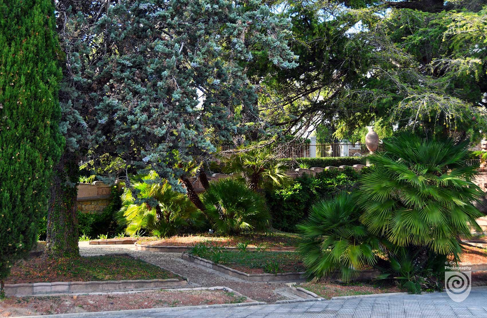 Prospettiva del parco